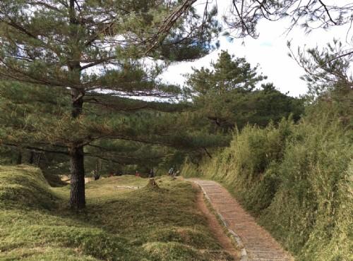 鹿林山步道/LU