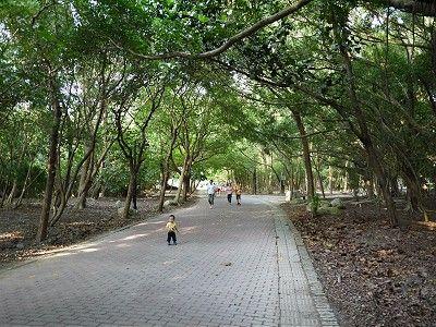 搭高雄捷運遊高雄人氣景點—R21高雄都會公園