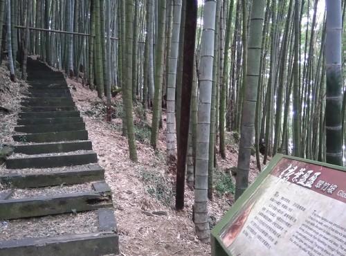 奮起湖木馬棧道/Lu