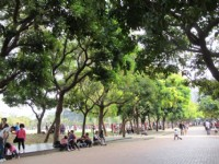 單車遊台中~綠園道文青小旅行