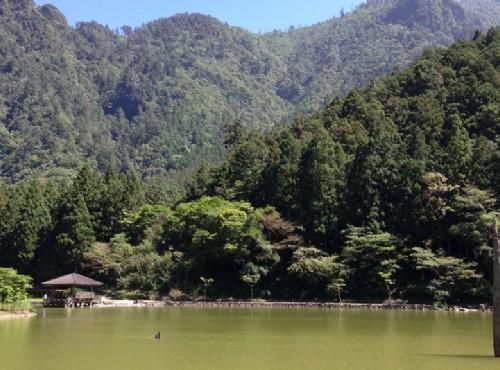 漫遊宜蘭:明池山莊森呼吸、輕鬆賞神木