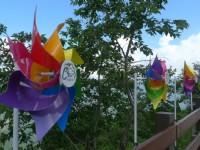 高山涼夏,暑假親子暢遊清境風車節