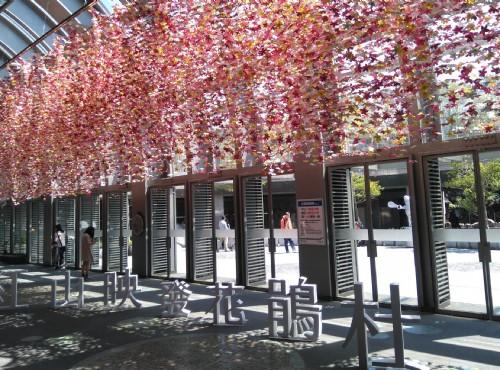 綻放萬紫千紅的春天:台北杜鵑花季x台大杜鵑花節