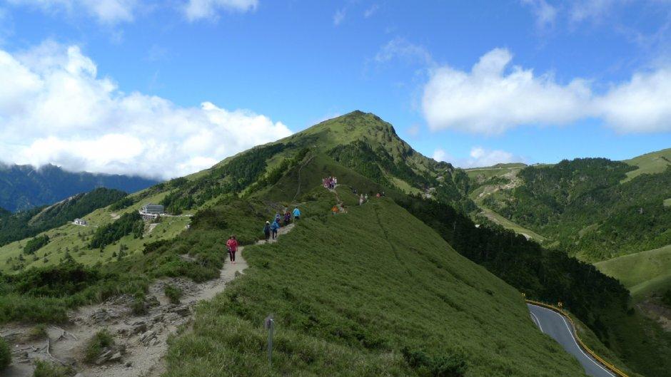合歡群峰石門山是賞高山杜鵑的好地方/Eva隨手拍